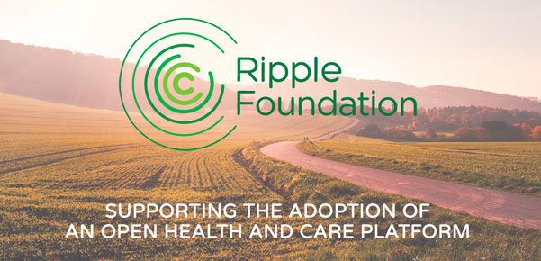 Lead Frontend Engineer // Ripple Foundation